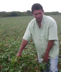 cotton br