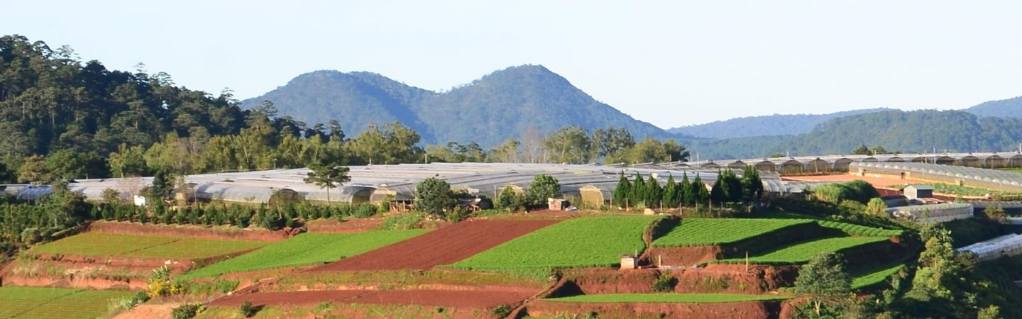 Central Highlands, Vietnam - IDH - the sustainable trade