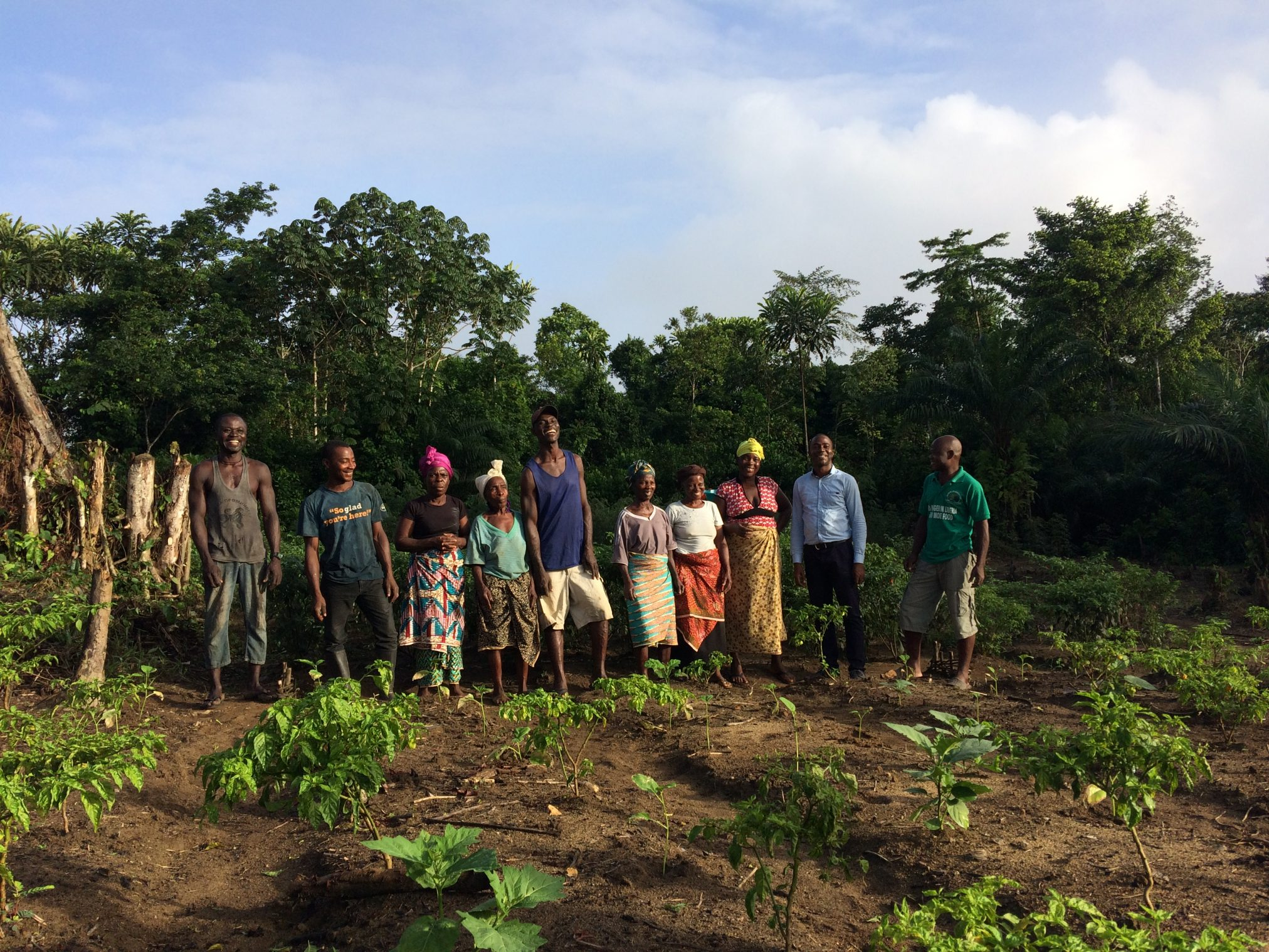 Farmer field school in Sinoe