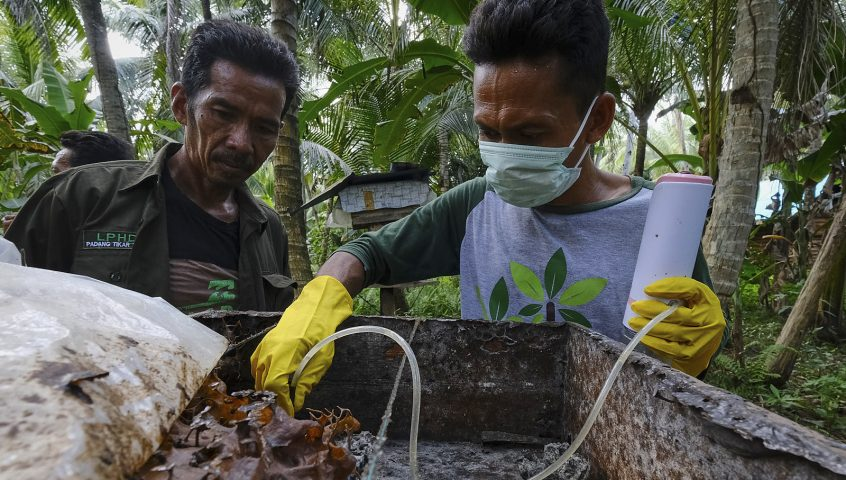 Village forest honey farmer extracts honey from a hive