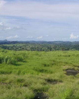 Landscape Approach