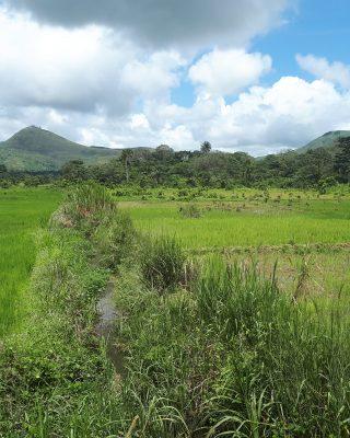 Foya district Liberia