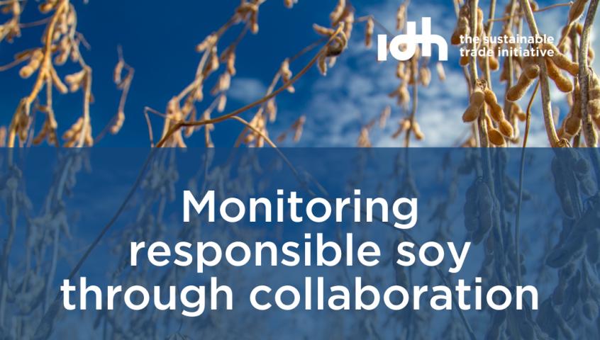 Monitoring responsible soy through collaboration