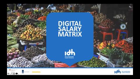Salary Matrix Training